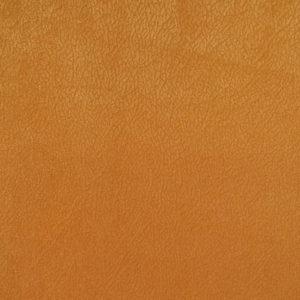 lancom-pln-orange