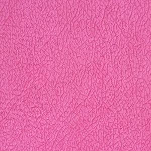 lancom-pln-pink