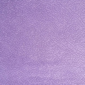 lancom-pln-violet
