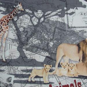 safari-03
