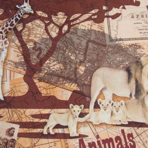 safari-09