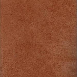 tucson-ginger